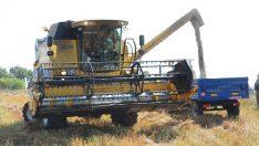 TürkTraktör'den karabuğday hasadına destek