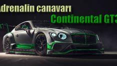 Bentley yeni Continental GT3'ü tanıttı