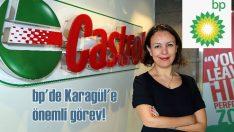 Aslı Yetkin Karagül bp'nin Başkan Yardımcısı Danışmanlığı'na atandı
